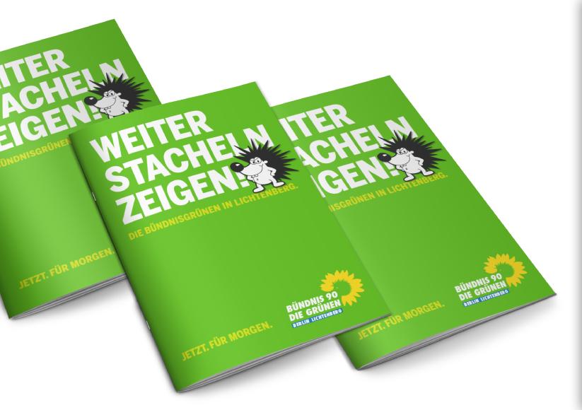buendnis-90_die-gruenen_berlin-lichtenberg_26_wahlkampagne_weiter-stacheln-zeigen_broschuere